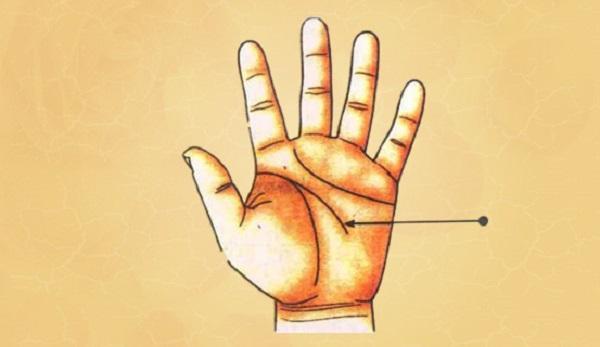 BẠN TIN KHÔNG: Xem chỉ tay để đoán vận mệnh mỗi người cực kỳ chính xác-3