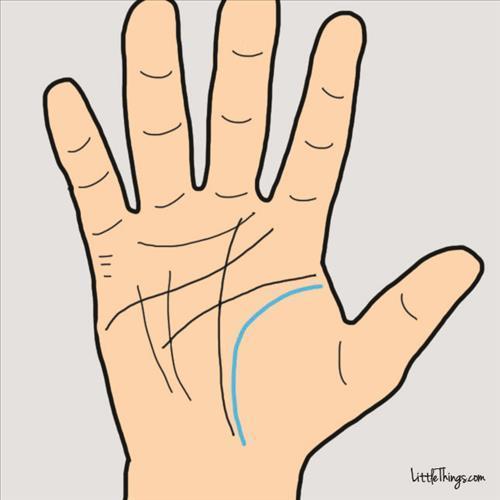 BẠN TIN KHÔNG: Xem chỉ tay để đoán vận mệnh mỗi người cực kỳ chính xác-5