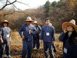 Khám phá thiên đường du lịch nổi tiếng qua phim ảnh ở Hàn Quốc-17