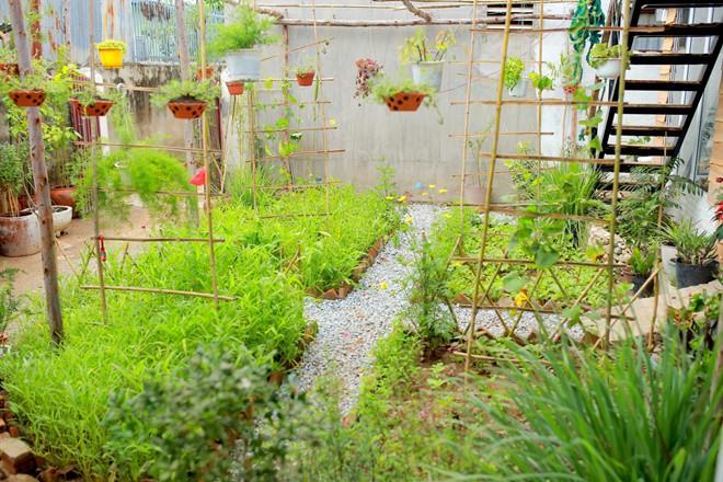 Homestay mới cho giới trẻ ở Ninh Thuận-6