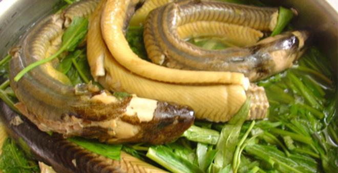 CẢNH BÁO: Ăn lươn theo cách này chẳng mấy chốc mà ngộ độc, thay đổi ngay kẻo hối hận không kịp-3