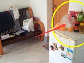 Cứ để thứ này trên tủ lạnh đừng hỏi vì sao TIỀN CỦA ĐỘI NÓN RA ĐI, 3 đời sau cũng không giàu nổi