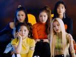 Gọi Red Velvet và fan nhóm là đám khùng điên, cựu thành viên V.Music ăn đủ gạch đá từ cộng đồng mạng-7