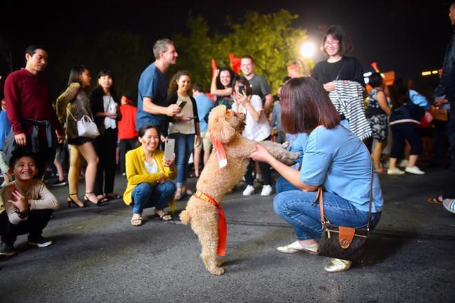 Cổ động viên tràn ra đường mừng Việt Nam vào chung kết-4