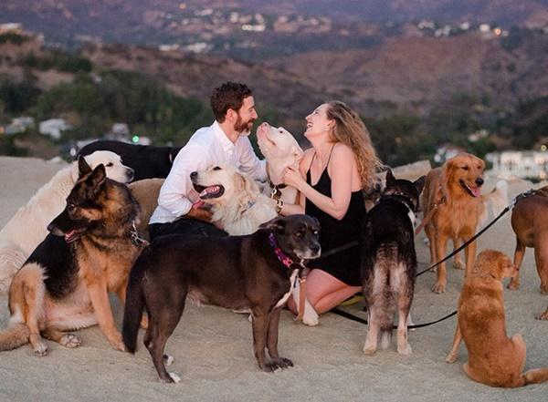 Cô gái hạnh phúc nhất thế giới, được cầu hôn với 16 chú chó bên cạnh-2