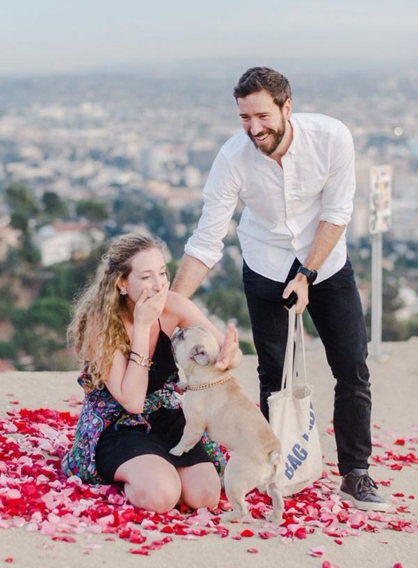 Cô gái hạnh phúc nhất thế giới, được cầu hôn với 16 chú chó bên cạnh-6