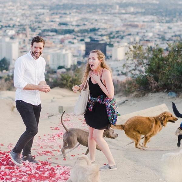 Cô gái hạnh phúc nhất thế giới, được cầu hôn với 16 chú chó bên cạnh-7