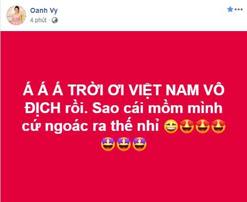 Dàn sao Việt gào nổ mạng xã hội, tưng bừng đi bão ăn mừng tuyển Việt Nam vô địch AFF Cup 2018-14