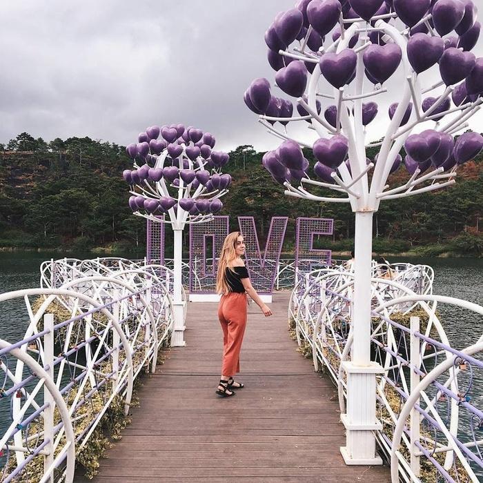 Lại có thêm một cây cầu tình yêu màu tím làm lịm tim biết bao du khách ở Đà Lạt-1