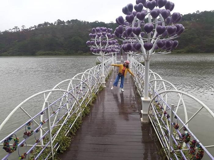 Lại có thêm một cây cầu tình yêu màu tím làm lịm tim biết bao du khách ở Đà Lạt-4