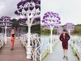 Lại có thêm một cây cầu tình yêu màu tím làm 'lịm tim' biết bao du khách ở Đà Lạt