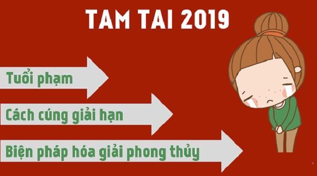 3 con giáp gặp hạn TAM TAI phải làm gì để giảm bớt HAO TÀI TỐN CỦA trong năm 2019?-1