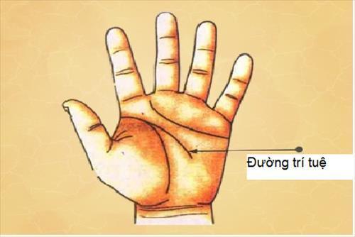 Muốn biết chính xác bao nhiêu tuổi lấy chồng, chỉ cần xem đường chỉ tay là ra hết-1