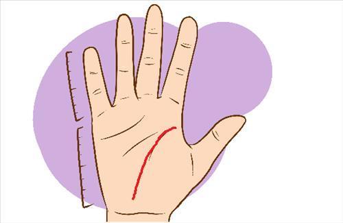 Muốn biết chính xác bao nhiêu tuổi lấy chồng, chỉ cần xem đường chỉ tay là ra hết-3
