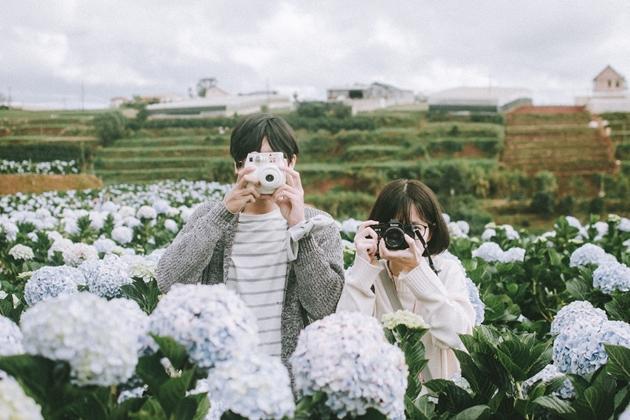 Lùng ra địa chỉ 9 loài hoa hot ở Đà Lạt hội sống ảo nhất định phải check-in-1