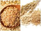 Các loại ngũ cốc nên ăn nếu bạn muốn giảm cân