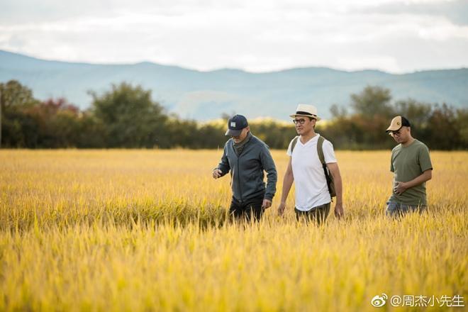 Nhĩ Khang Hoàn Châu cách cách khoe điền trang tráng lệ ở quê-9