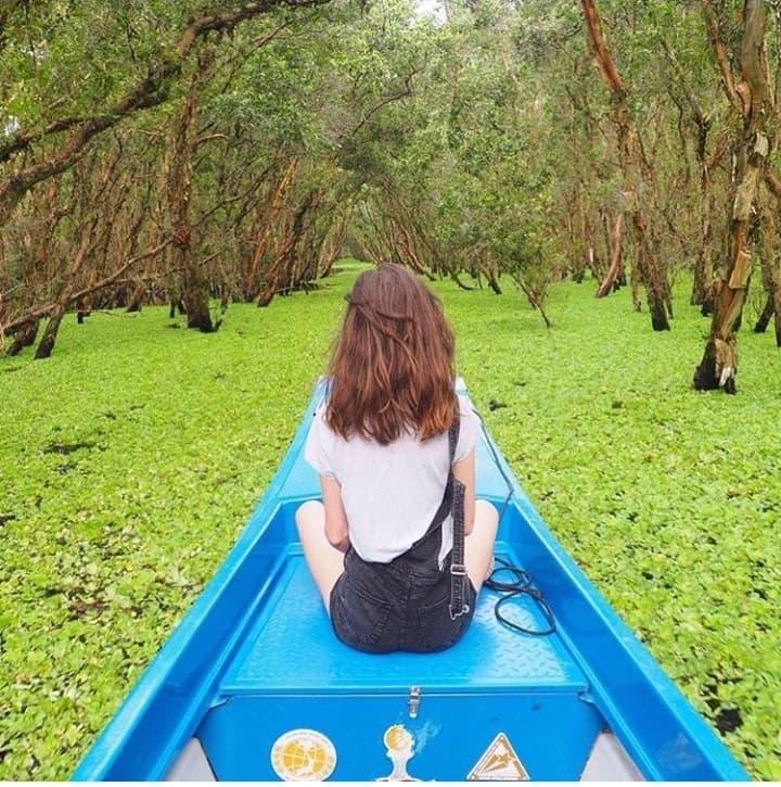 Khám phá rừng tràm xanh biếc ở An Giang đẹp như tiên cảnh đang được giới trẻ săn lùng-4