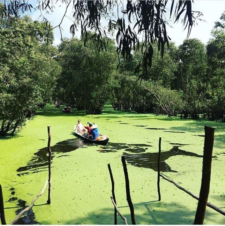 Khám phá rừng tràm xanh biếc ở An Giang đẹp như tiên cảnh đang được giới trẻ săn lùng-9