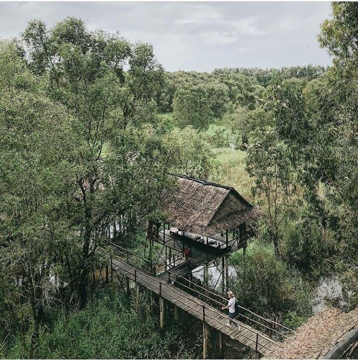 Khám phá rừng tràm xanh biếc ở An Giang đẹp như tiên cảnh đang được giới trẻ săn lùng-10