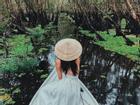 Khám phá rừng tràm xanh biếc ở An Giang đẹp như tiên cảnh đang được giới trẻ săn lùng