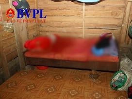 Bé trai hơn 10 tháng tuổi bị người mẹ lấy gối đè tử vong