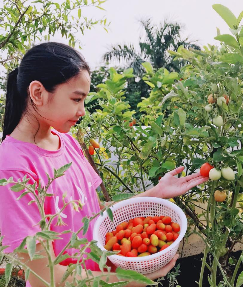 Mới 13 tuổi, con gái MC Quyền Linh được dự đoán sẽ trở thành Hoa hậu vì quá xinh đẹp-4