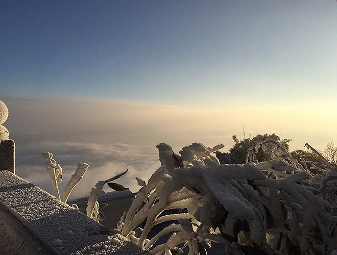 Đỉnh Fansipan đẹp ngỡ ngàng giữa trời tuyết trắng-15