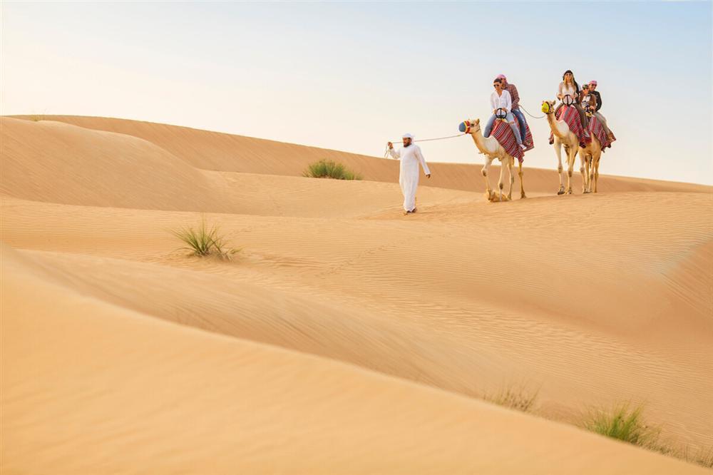 Cưỡi lạc đà băng qua sa mạc mừng năm mới-1
