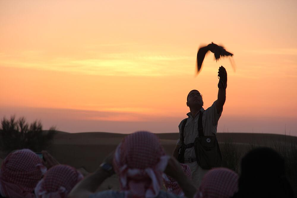 Cưỡi lạc đà băng qua sa mạc mừng năm mới-4