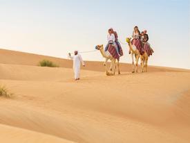 Cưỡi lạc đà băng qua sa mạc mừng năm mới