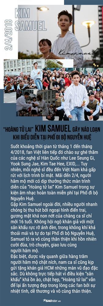 Loạt sao Kpop tỏa sáng trên sân khấu Việt Nam suốt năm qua: Idol nhà ai đỉnh nhất? (P.1)-3