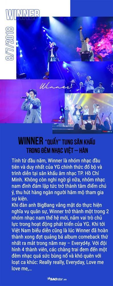 Loạt sao Kpop tỏa sáng trên sân khấu Việt Nam suốt năm qua: Idol nhà ai đỉnh nhất? (P.1)-5