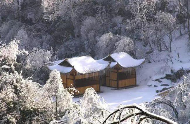 Du khách phấn khích trước cảnh tượng băng tuyết phủ trắng Trương Gia Giới-3