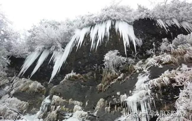 Du khách phấn khích trước cảnh tượng băng tuyết phủ trắng Trương Gia Giới-10