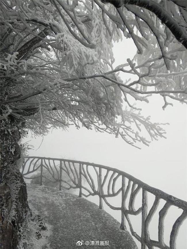 Du khách phấn khích trước cảnh tượng băng tuyết phủ trắng Trương Gia Giới-16