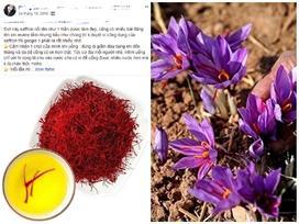 Nhụy hoa nghệ tây - Thần dược làm đẹp đang được các tín đồ khắp nơi ca tụng