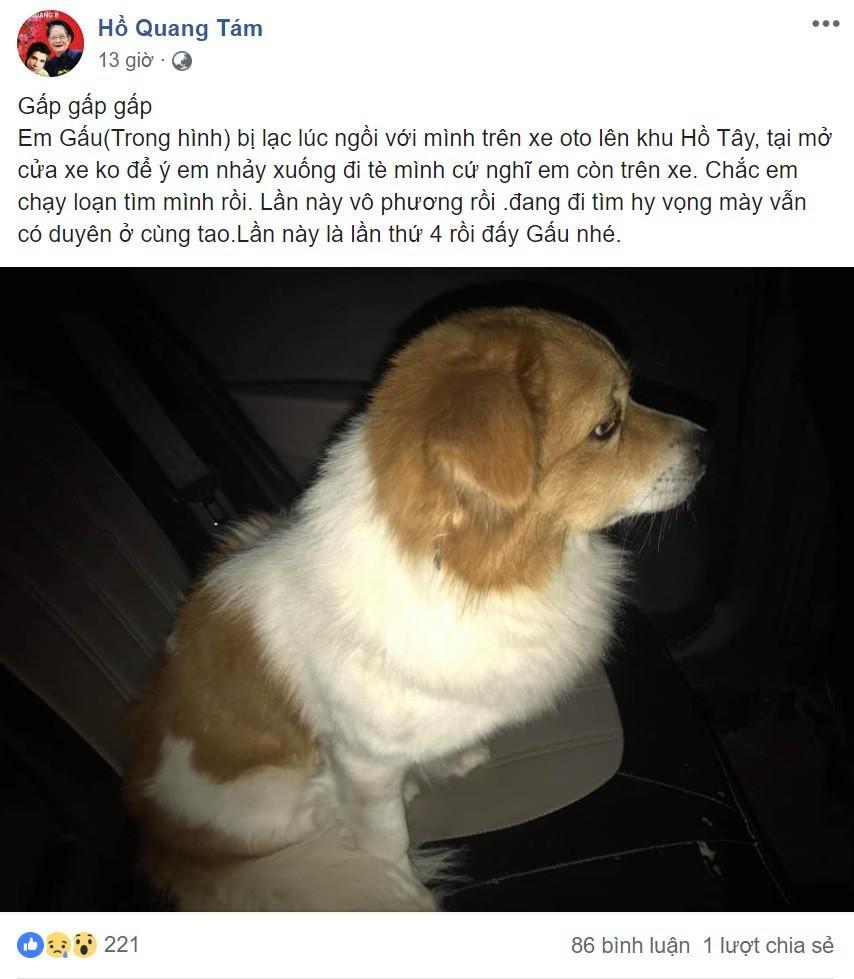 Ngoại hình đẹp chuẩn hotgirl của cô gái tìm chủ cho chú chó bị lạc giữa đêm lạnh khiến cầu thủ U23 sốt sắng xin info-10