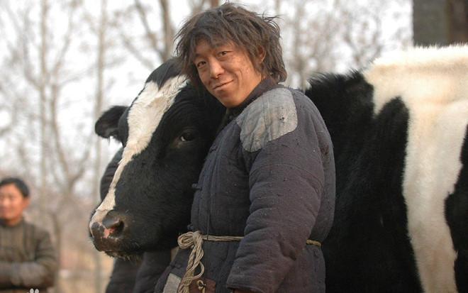 Loạt phim giúp Vương Bảo Cường, Từ Tranh trở thành vua hài mới-9