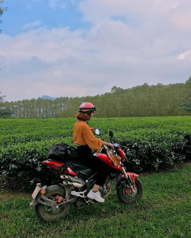 7 đồi chè sống ảo đỉnh cao dành cho dân thích xê dịch ở Việt Nam-13