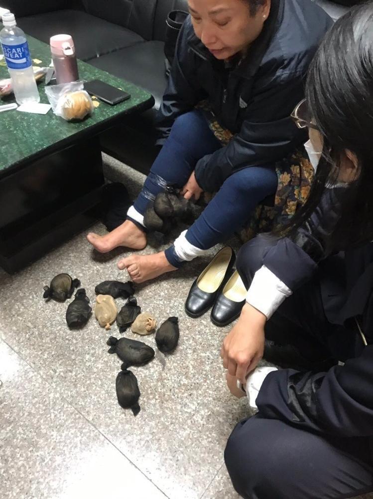 Nữ du khách bị bắt vì giấu 24 con chuột dưới váy-1