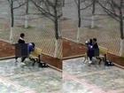 Cặp sinh viên diễn cảnh nóng ngay trong khuôn viên trường học gây phẫn nộ