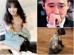Xúi dại Hari Won cạo sạch lông mèo 3.000 USD lần nữa, có vẻ fan rất thích xem cảnh 'cháy nhà' của cô và Trấn Thành?
