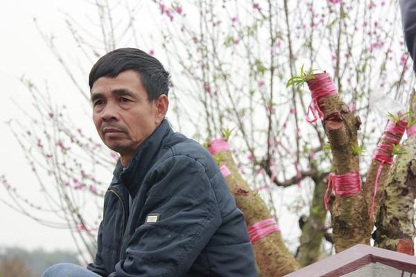 11 gia đình uất nghẹn vì bị chặt phá hàng trăm gốc đào bán Tết trong khi mải xem đội tuyển Việt Nam đá bóng-5