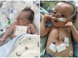 Ngừng tim 25 lần/một ngày, cậu bé vẫn sống sót diệu kỳ