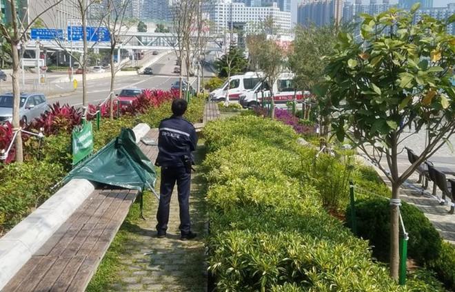 Diễn viên quần chúng TVB qua đời vì rét khi ngủ giữa công viên-1