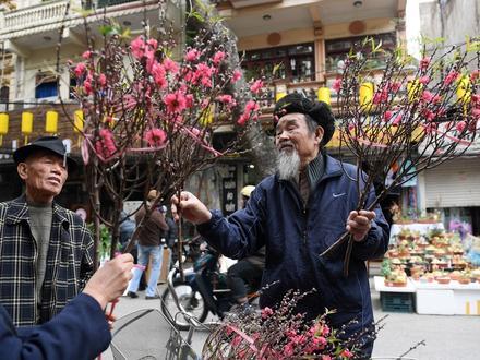 Chợ Hàng Lược nhộn nhịp, nhiều người dạo chơi trước Tết Kỷ Hợi