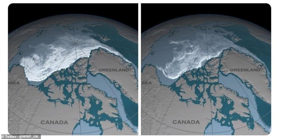 Trào lưu 10 năm thay đổi và sự thật đau lòng khi Trái đất đã biến đổi quá nhiều-6