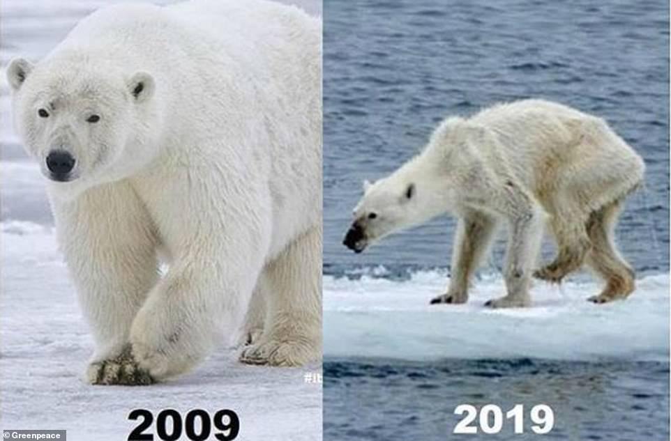 Trào lưu 10 năm thay đổi và sự thật đau lòng khi Trái đất đã biến đổi quá nhiều-7