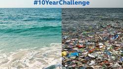 Trào lưu 10 năm thay đổi và sự thật đau lòng khi Trái đất đã biến đổi quá nhiều